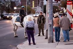 Zombie Walk 2011 - Albany, NY - 2011, Oct - 01.jpg by sebastien.barre