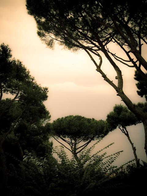 From room at Hotel La Tosca on Capri