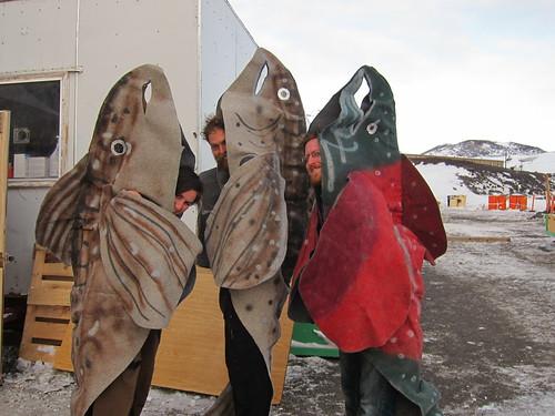 Antartika'da Olan 16 Şey