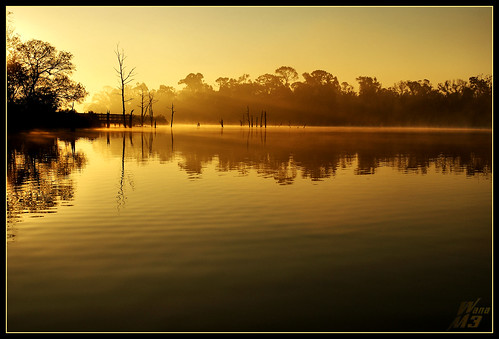 light mist nature water sunrise golden texas scenic bayou pasadena blueribbonwinner bayareapark armandbayou wanam3