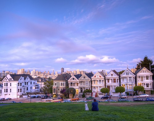 A man, his dog and seven painted ladies in San Francisco | by Jamie McCaffrey