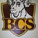 BCS Gym Painting 2011
