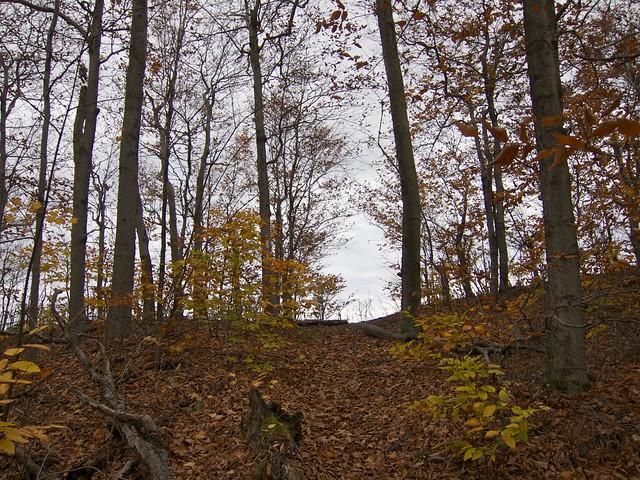0:33:15 (47%): hiking newhampshire appalachiantrail holtsledge