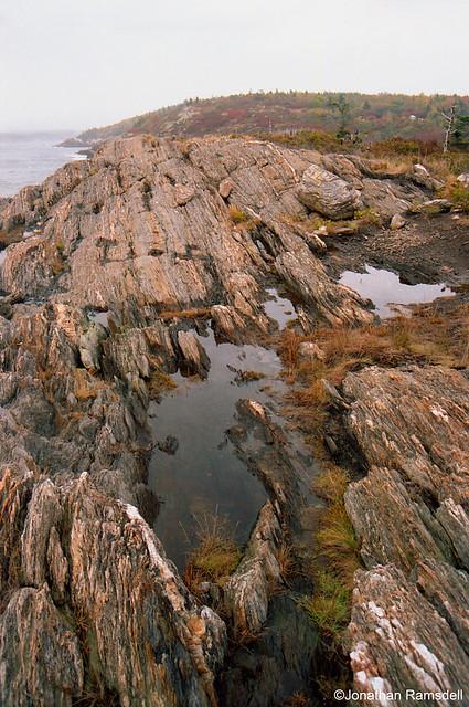 Rocks and Pool, Acadia National Park