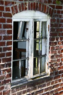 Thementag: Fenster