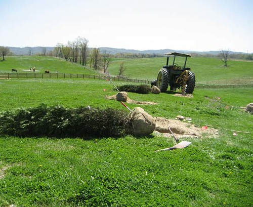 Because this site was formerly used as pasture, the ground was very compacted and having a tractor on site was a big help.