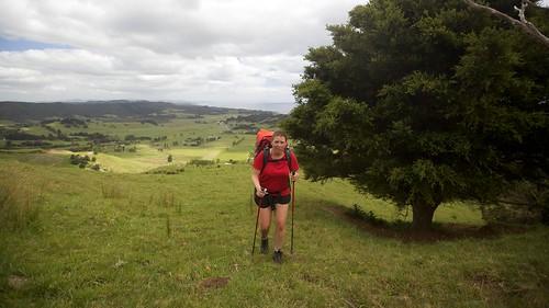 newzealand walking auckland nicky teararoa thelongpathway