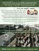 עלון קמפיין כלובי סוללה- צד אחורי