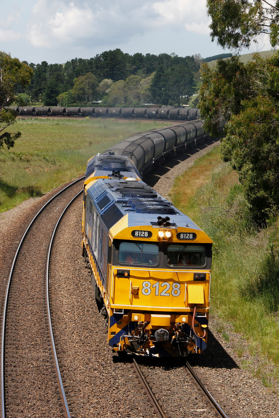 Pacific National Empty wheat train by Robert Cook