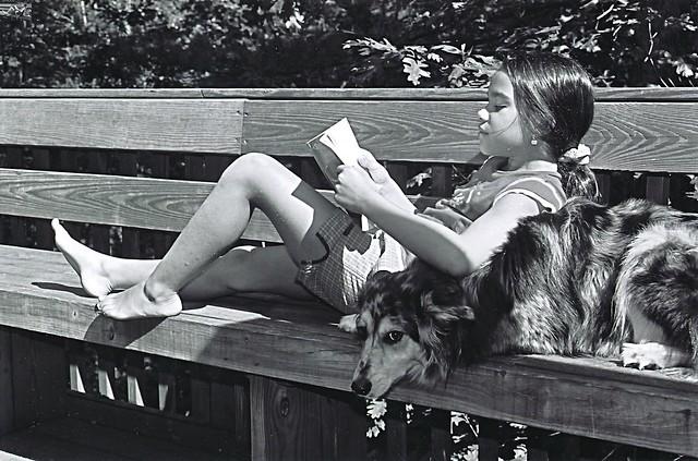 Dog Reading 2