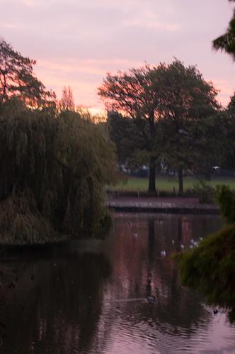 Autumn dawn, West Park