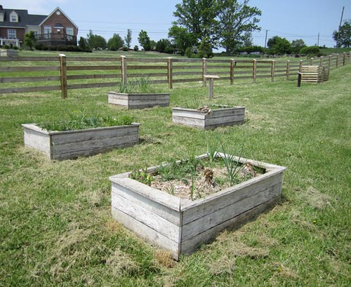 We constructed four raised garden beds rom antique oak boards salvaged from an old barn on the property. The compost bins in the background were built as part of one of the learning stations.