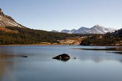 2011-10-15 10-23 Sierra Nevada 345 Yosemite National Park, Tioga Lake