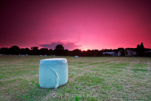 pink sunset colour canon evening kent purple vibrant vivid late format hay olly filters hitech bails stacked filed bold lightroom orpington plumstead 450d br6 ollyplumsteadportfolio
