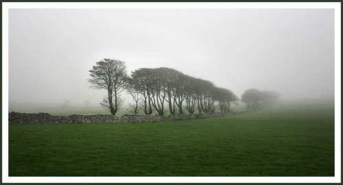 Fog over the fields of Athenry | by EoinGardiner