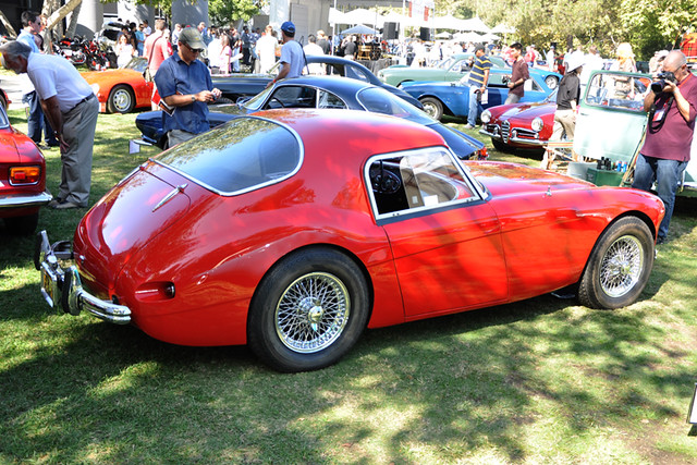 1956 Austin Healey Coupe