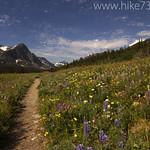 Cutbank trailhead with flowers