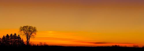 autumn field sunrise stjacobs hiedelburg
