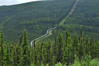 The Alaska Pipeline | by y entonces