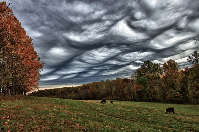 Asperitas Clouds Day 226/366