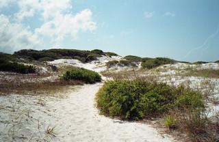 Miramar Beach - 46 | by blgrssby