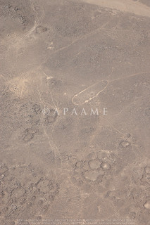 Ghusein Cairns 5. Negative Work | by APAAME