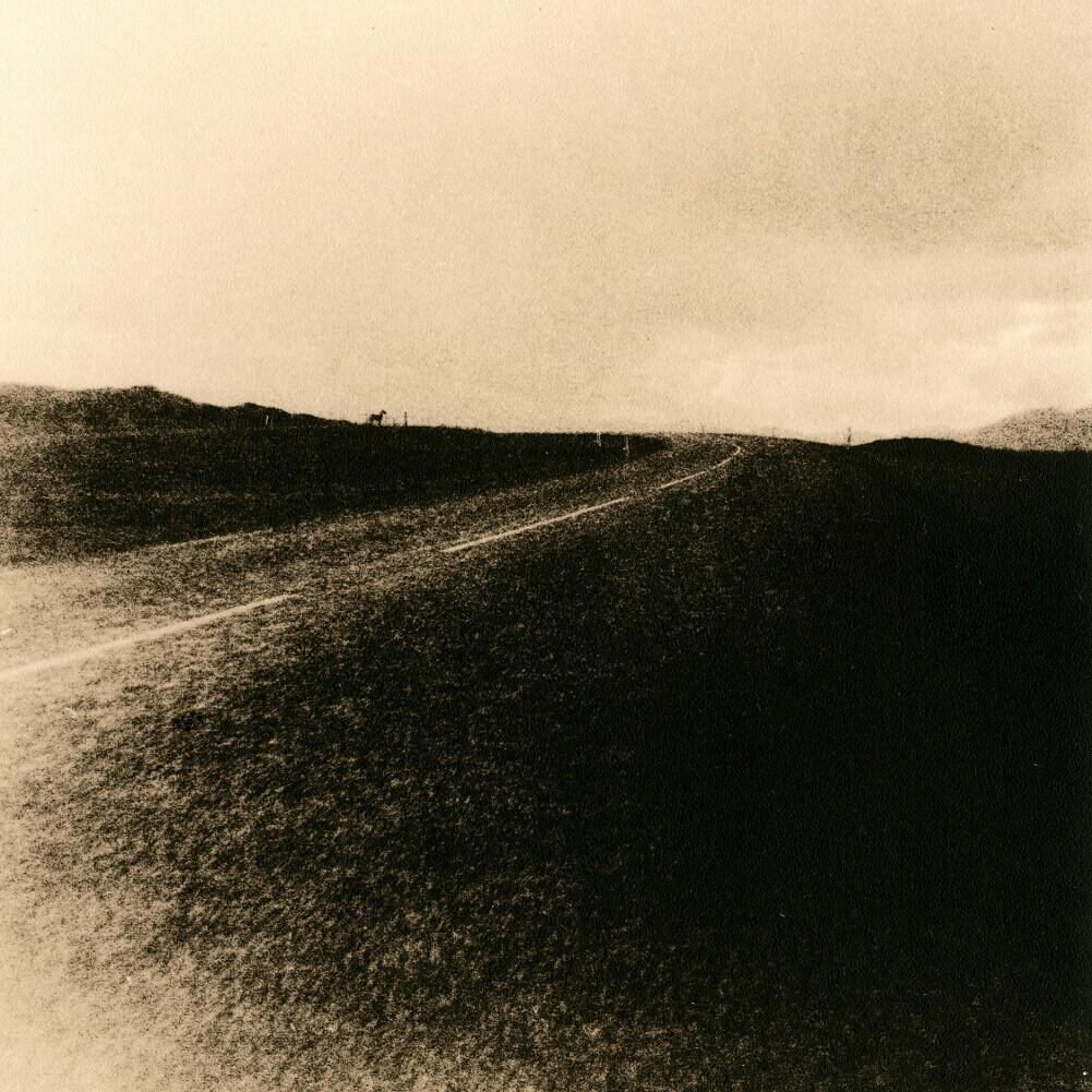 Roadscape + Horse / Lithauffahrt