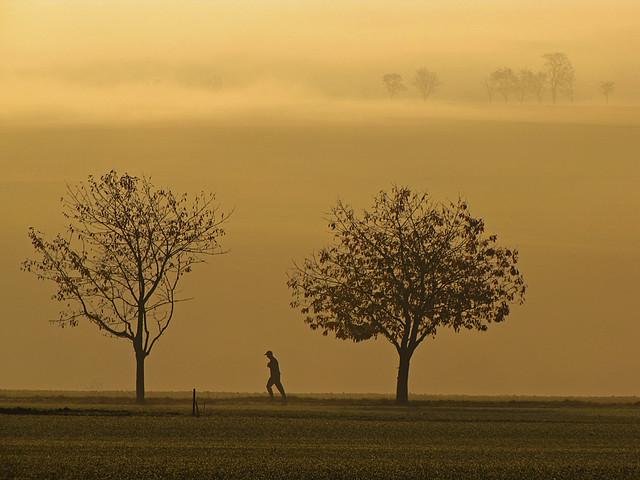 Lonesome runner