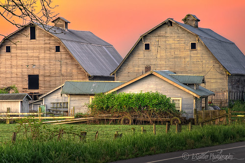 morning barn rural sunrise washington greenriver farms bracketed hdrs june2011 lgallier kentauburnvalley