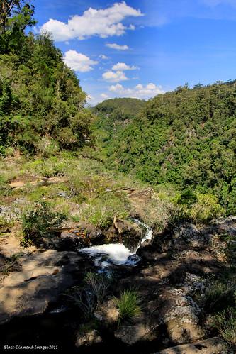 waterfall top australia nsw bdi ellenboroughfalls midnorthcoast elands manningvalley bulgaplateau australianwaterfalls manningvalleytourism ellenboroughfallsreserve boorgannaflorareserve