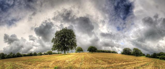 After the rain - Glory