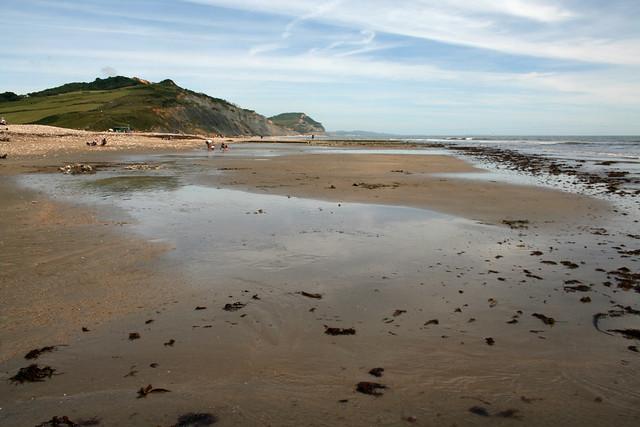 The beach at Charmouth
