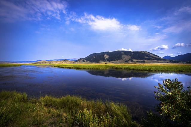 Flat Creek view - Jackson - Wyoming