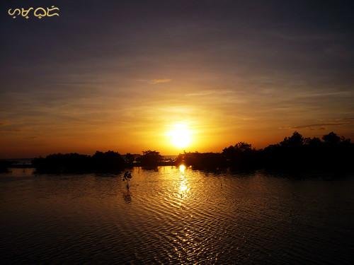 cebu mangrove olango water marsh sunset ripples