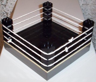 Wrestling Ring (View 1) | A mini wrestling ring built for my