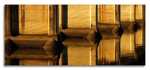 bridge sunset reflection water sunrise river structure coomera 1ds2 pixelpix canontse24mmf35lii adpotd