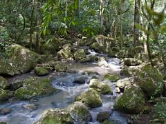 Arroyo Parque Profundidad