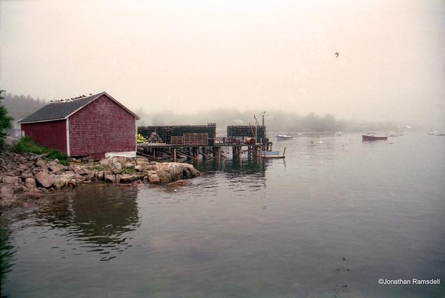 Prospect Harbor Fog