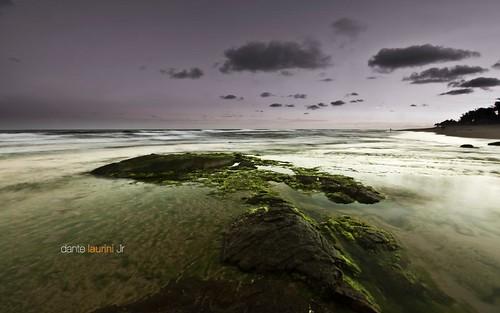 stella brazil praia beach rock brasil sunrise bahia salvador maris dantelaurinijr