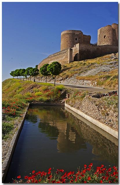 Un espejo en La Mancha