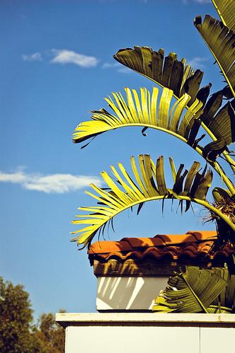 blue roof sky tree turkey hotel nikon asia türkiye resort antalya villa 12 nikkor vr afs 尼康 fivestar kadriye thedome kempinski 18200mm 土耳其 亚洲 f3556g d40 ニコン 18200mmf3556g 安塔利亚
