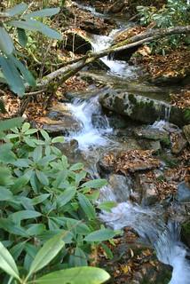 Creek | by www78