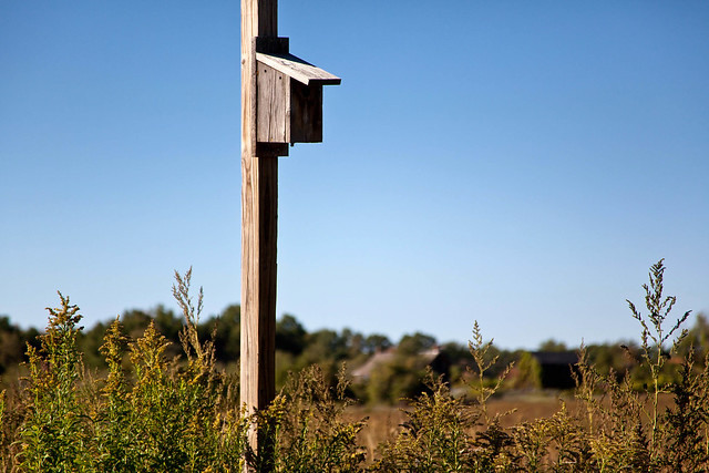 Indian Ladder Farms - Altamont, NY - 2010, Oct - 05.jpg