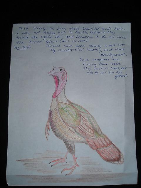 Wild Turkey. Jail art.
