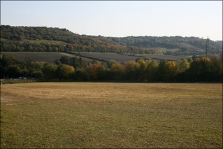 The downs near Shoreham