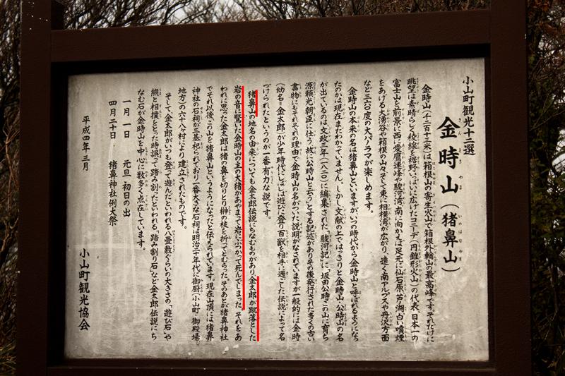 20111112_金時山_0037