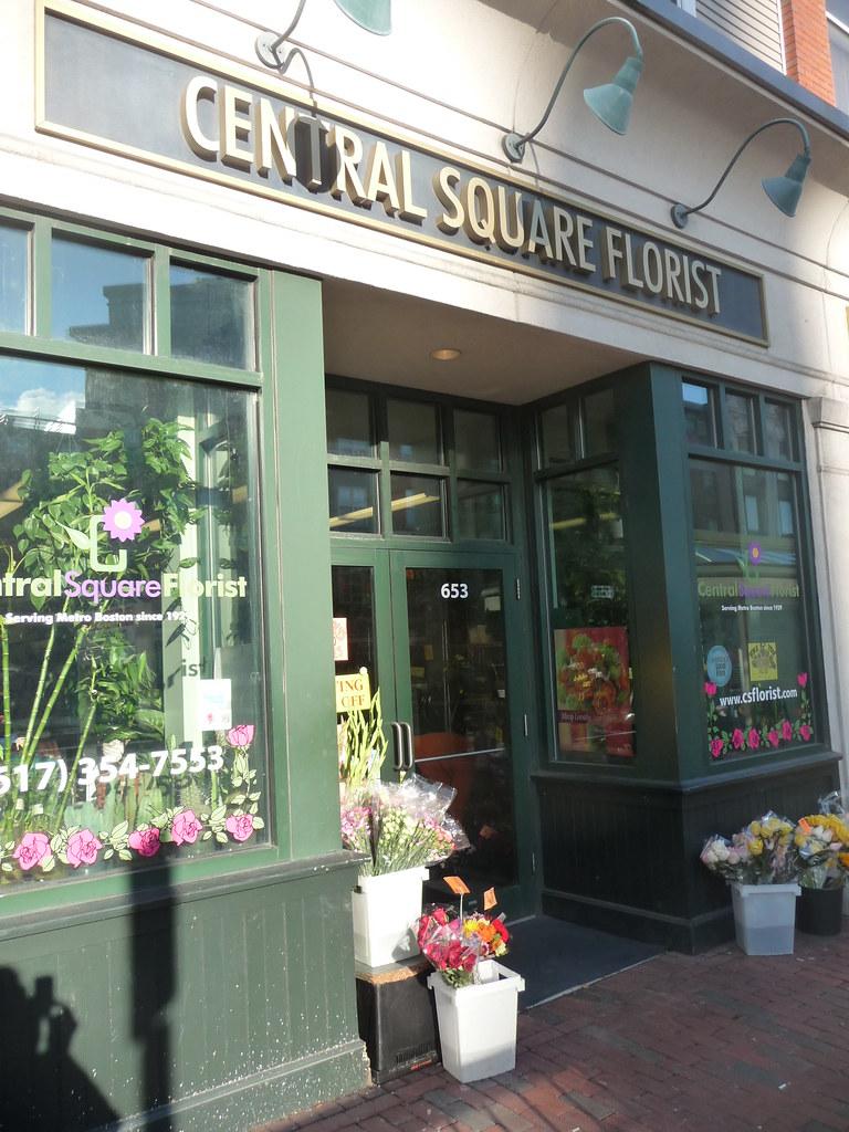 Central Square - Central Square Florist, Cambridge, MA