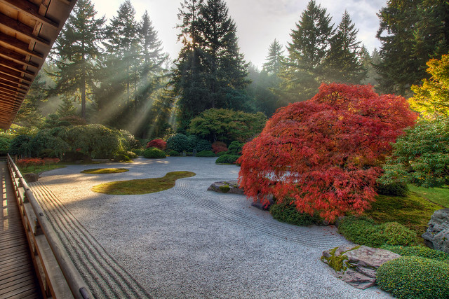 One Fall Afternoon at the Flat Garden in Portland Japanese Garden - HDR