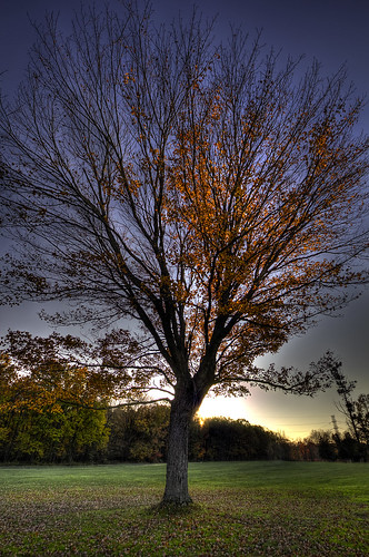 sunset fall newjersey nj fallfoliage foliage hdr edison handheldhdr oakridgepark