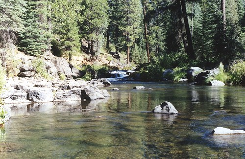 McCloud River, CA 2000   by inkknife_2000 (10.5 million + views)